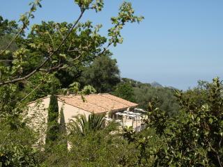 Costa di sognu Appartement 2épis corse - Belgodere vacation rentals