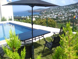 PRİVATE SWİMMİNGPOOL AND GARDEN - Gundogan vacation rentals