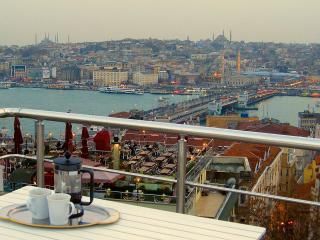 Fabulous Golden Horn views from Shared Terrace - Istanbul vacation rentals