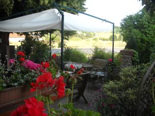 Chambres d'hôtes La Ganse Blanche - Usson-en-Forez vacation rentals