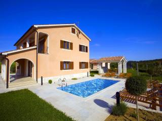 Beautiful villa near Motovun - Karojba vacation rentals