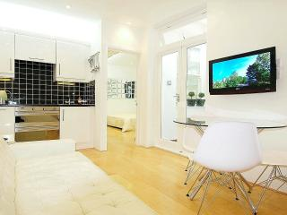 Modern Apartment with Spa - London vacation rentals