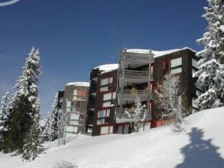 LE VALAISAN I - Montvalezan vacation rentals