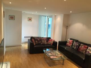 Central London luxurious 2 double bedroom flat - London vacation rentals