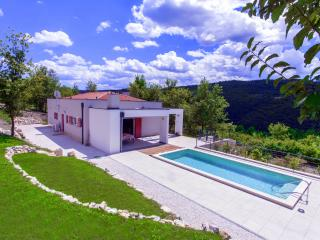 New design villa with pool in middle of nature - Motovun vacation rentals