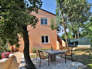 TH00439 Apartments Vila Sandra / One bedroom A1 - Liznjan vacation rentals