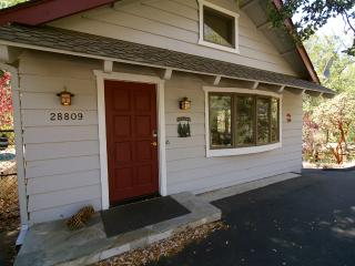 3 bedroom House with Internet Access in Lake Arrowhead - Lake Arrowhead vacation rentals