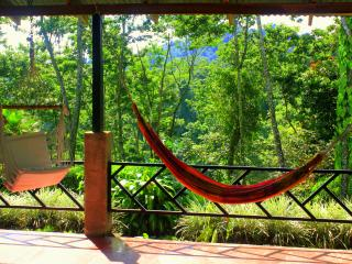 Lovely Bungalow with Television and Balcony - La Fortuna de San Carlos vacation rentals