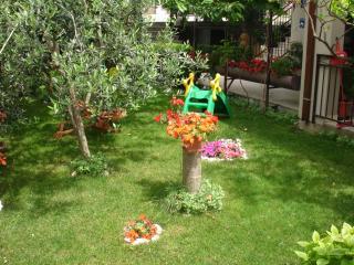 TH01837 Apartments Villa Ivanka / Studio A7 - Seget Donji vacation rentals