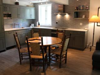 Aspen 3 BR/2 BA Condo (Great 3 BR & 2 BA Condo in Aspen (Lift One - 305 - 3B/2B)) - Aspen vacation rentals