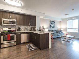 Luxury Avalo 1 bdrm DTLA convention 29 - Los Angeles vacation rentals