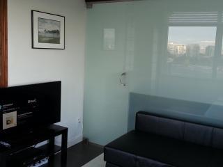 Beautiful Deluxe 1 Bedroom Condo - Vancouver vacation rentals