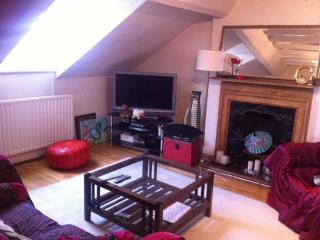 1 room to rent in a two bed flat sleeps two - London vacation rentals