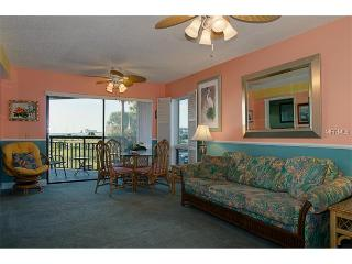 TROPICAL CONDO ON THE GULF - Saint Pete Beach vacation rentals