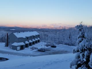 Slopeside condo with great view on Burke Mountain - East Burke vacation rentals