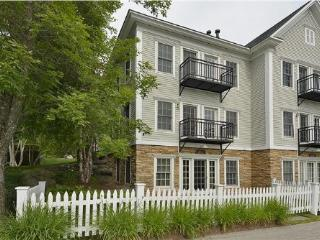 Gorgeous House with Internet Access and A/C - Stowe vacation rentals
