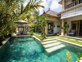 Villa Semua Suka 3BD/3BA/POOL/Ricefields of Ubud - Ubud vacation rentals