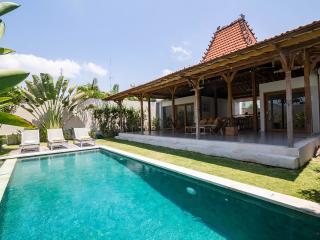 Lovely Villa with Internet Access and A/C - Canggu vacation rentals