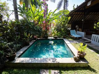 Hyacinth House with Private Pool in the Ricefields of Ubud - Ubud vacation rentals