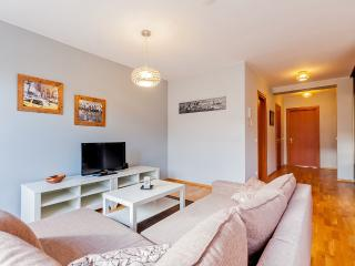 Modern Dresden apartment - Dresden vacation rentals