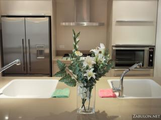 The Gold Residence, 2 BR Executive Grand - Jerusalem vacation rentals