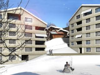 Family Alpine chic apartment - Fiesch in Valais vacation rentals