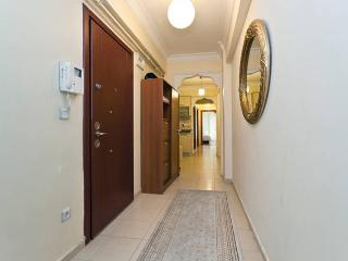 Two-Bedroomed apartment in the city centre - Istanbul vacation rentals
