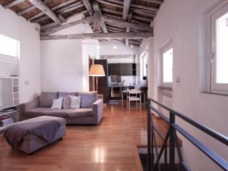 Pettinari, amazing apartment in excellent location - Rome vacation rentals