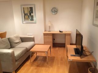 Spacious One Bedroom Apartment in Paddington W2 - London vacation rentals