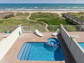 Gorgeous House with Internet Access and A/C - South Padre Island vacation rentals