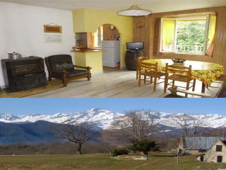 appartement 2/6 personnes ski à Guzet neige - Seix vacation rentals