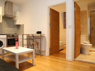Alexander Paddington Apartments One Bedroom - London vacation rentals