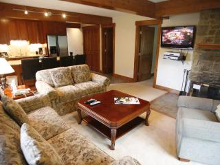Picturesque 3 Bedroom & 3 Bathroom Condo in Aspen (Idyllic Condo in Aspen (Lift One - 410 - 3B/3B)) - Aspen vacation rentals