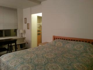 Romantic 1 bedroom Condo in Arlington with Internet Access - Arlington vacation rentals