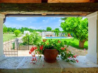 Charming 4 bedroom villa with private pool - Visnjan vacation rentals