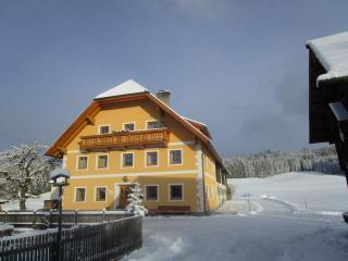 Urlaub am Bio-Bauernhof, Zimmer mit Frühstück - Tamsweg vacation rentals