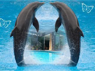 WONDERFUL VILLA PATONG BEACH pv pool 4 bedrooms - Patong vacation rentals
