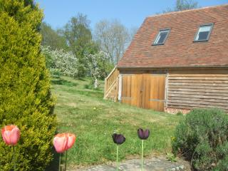 Perfect Bed and Breakfast with Internet Access and Parking - Etchingham vacation rentals