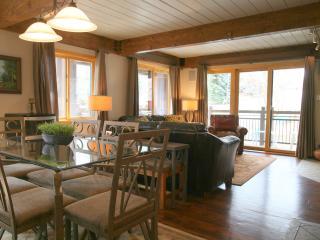 Lift One - 406 - 3B/3B - Aspen vacation rentals