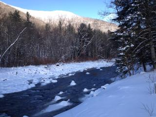 Sanctuary by the Stream - Beautiful in the Winter & close to Ski Areas - Phoenicia vacation rentals