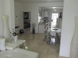 Nice Condo with Television and DVD Player - Havana vacation rentals