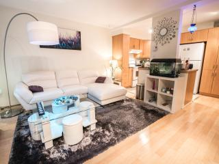 Cozy Condo with Internet Access and A/C - Montreal vacation rentals