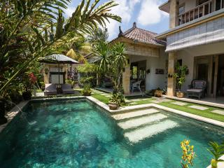Villa Semua Suka 2 Bedroom Villa and Pool in the Ricefields of Ubud - Ubud vacation rentals