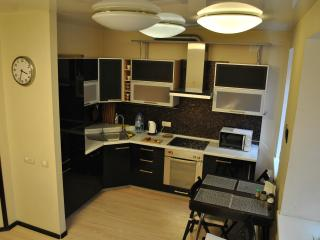 3room apartments in center of Yekaterinburg - Yekaterinburg vacation rentals