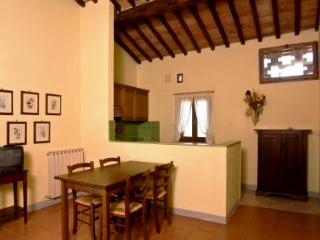 Poggio 7. Apartment with pool in the Chianti - Siena vacation rentals