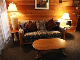 Cozy 1 bedroom/1 bathroom, WiFi, Sleeps up to 4, On shuttle route! - Mammoth Lakes vacation rentals