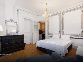 Galata6 historicl vibrant 3rm 3bath - Istanbul vacation rentals