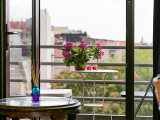 12Cihangir historicl vibrant large w/elevator - Istanbul vacation rentals