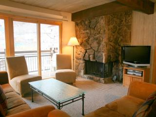 Beautiful 2 Bedroom, 2 Bathroom Condo in Aspen (Aspen 2 Bedroom, 2 Bathroom Condo (Lift One - 407 - 2B/2B)) - Aspen vacation rentals