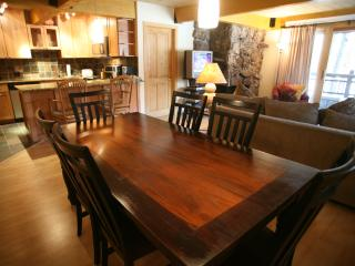 Beautiful 3 Bedroom & 3 Bathroom Condo in Aspen (Lift One - 101 - 3B/3B) - Aspen vacation rentals